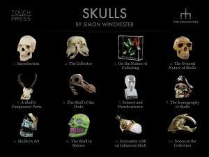 skulls_front_full